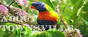Budget Travel Talk's posts relating to Townsville
