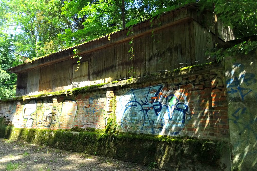 Zagreb Leafy Walk Graffiti