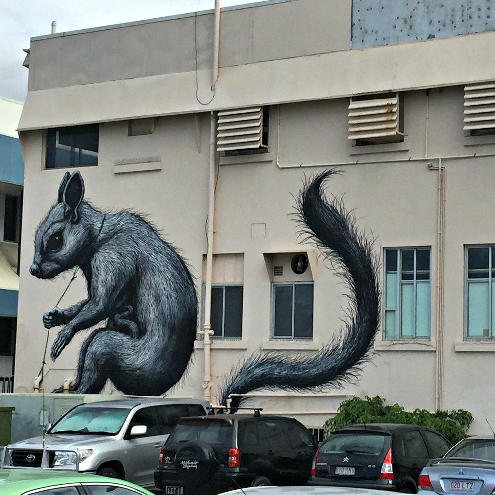 Townsville ROA Rat Painting