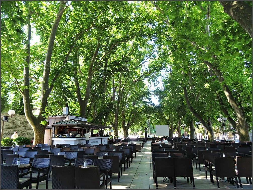 Trebinje Bar Beneath the Plane Trees