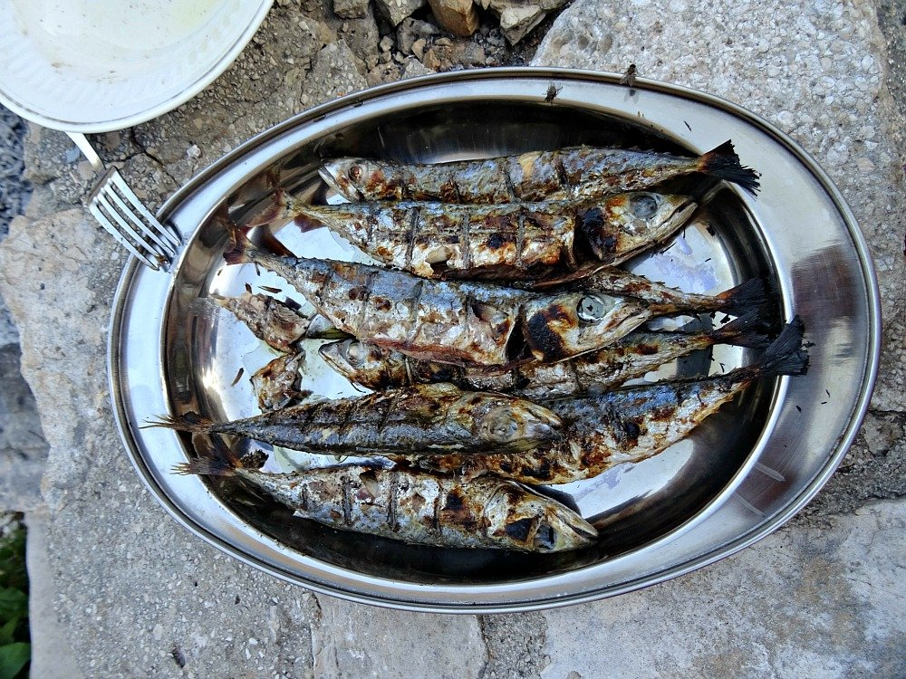 Platter of grilled blue fish on Vis Island Croatia