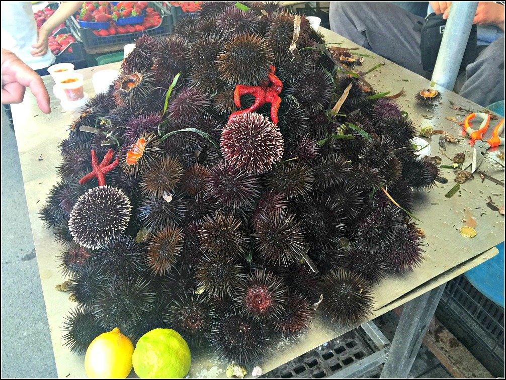 Siracusa Sea Urchins Ortigia Market