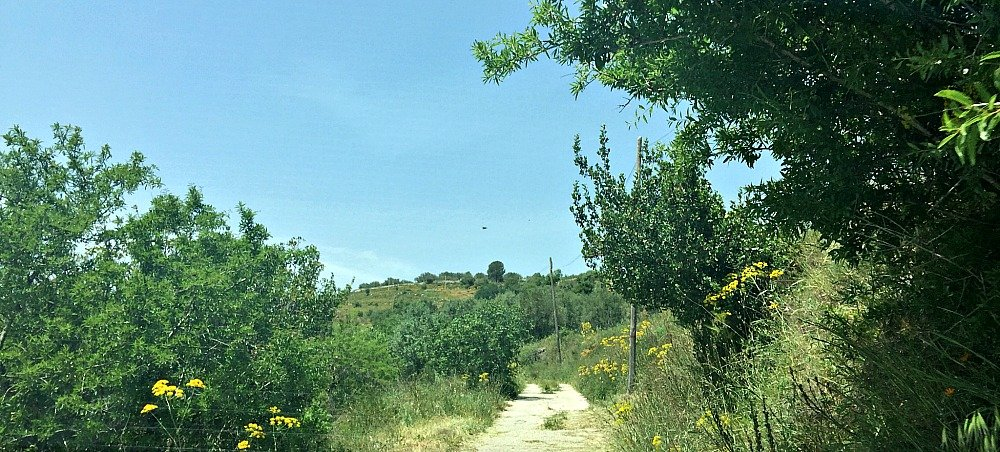 Southern Sicily Sortina Shortcut