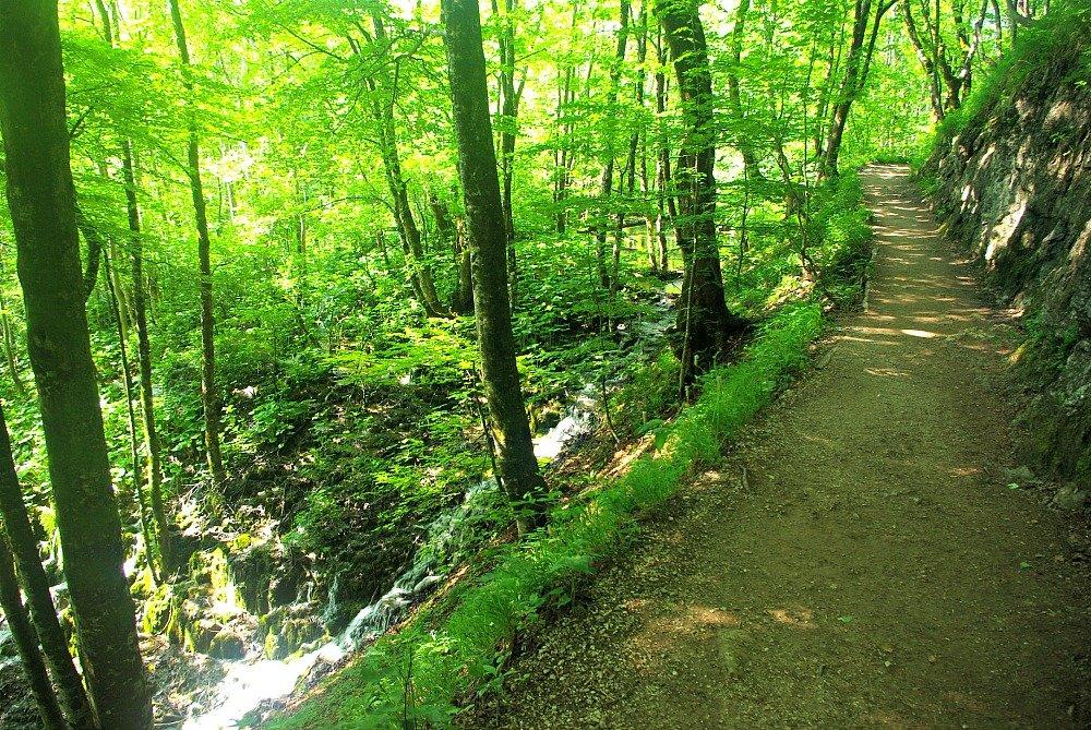 Plitvice Lakes Gravel Paths