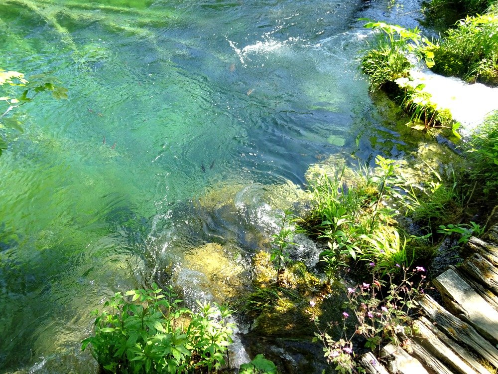 Plitvice Lakes Walkways and Water