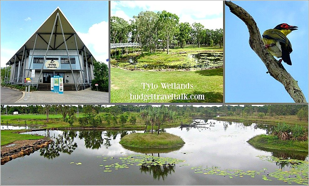 Tyto Wetlands on the Bruce Highway (Townsville Road) at Ingham has a Low Cost Camping area