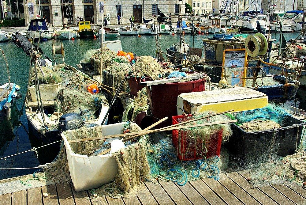 Piran harbour fishing nets