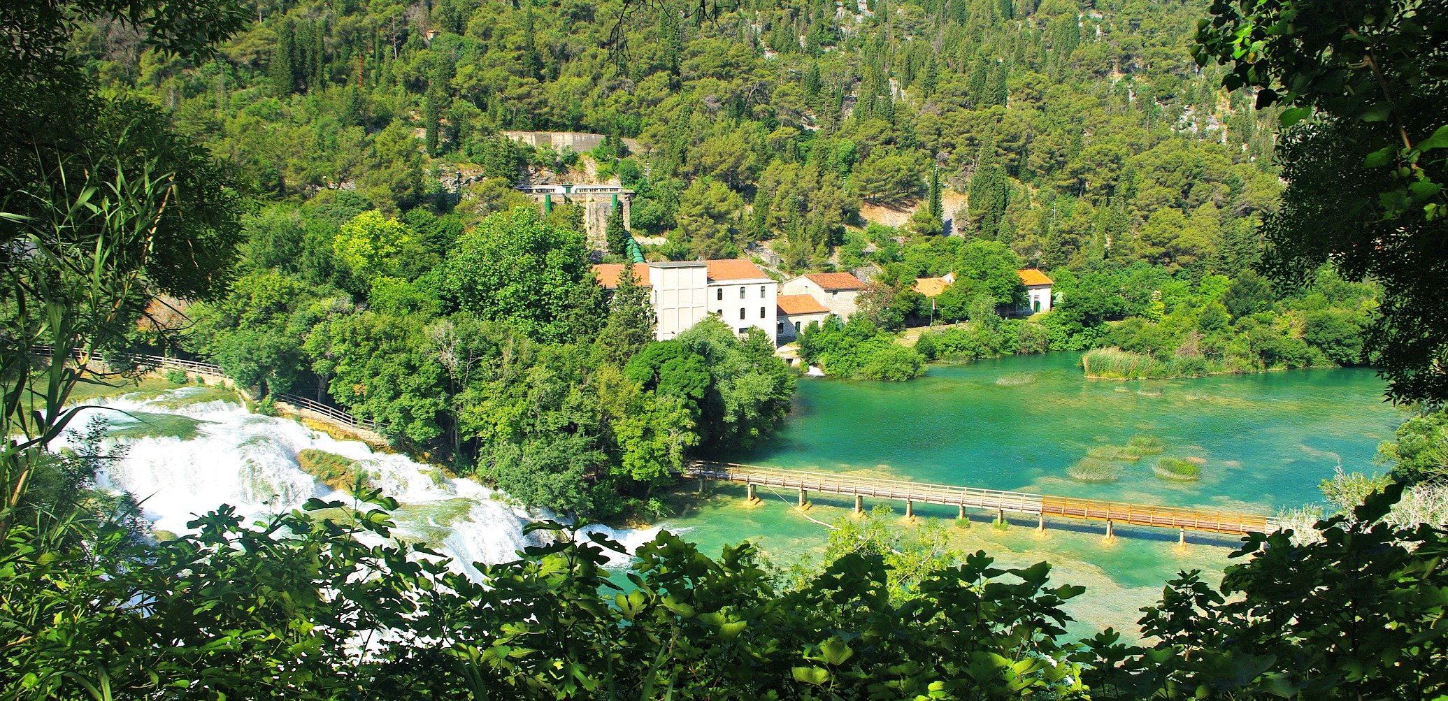 Spring growth obscures the view Krka National Park Croatia