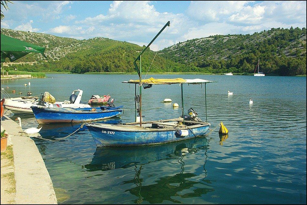 Skradin Bars Boats Swans