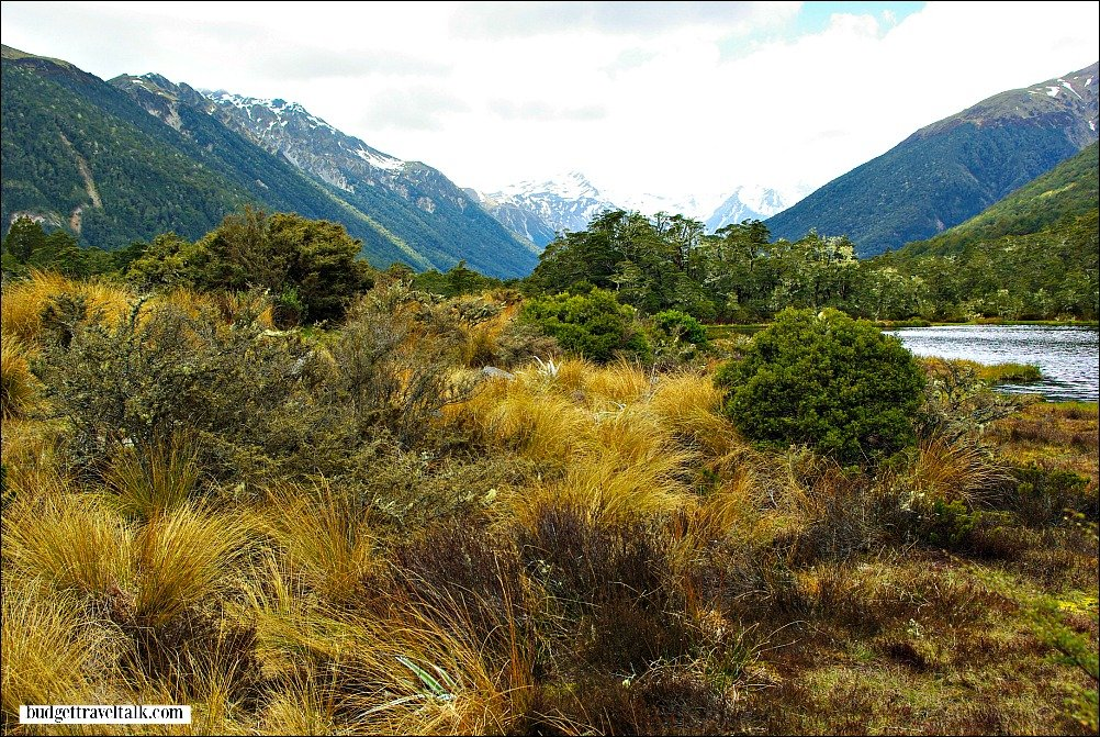 Lewis Pass South Island of New Zealand