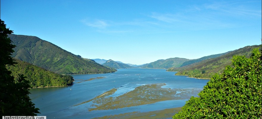 Pelorus Sound One Of The Marlborough Sounds South Island Of New