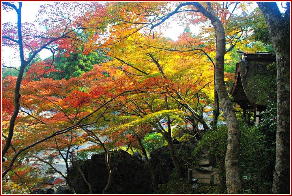 Autumn at Ishiyama-dera temple Otsu Japan
