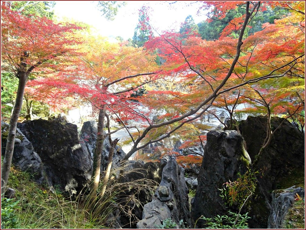 Ishiyama-dera Rocks and Colour