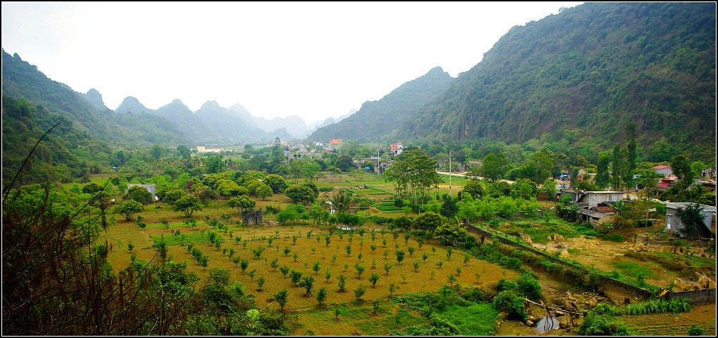 Cat Ba Island Agriculture