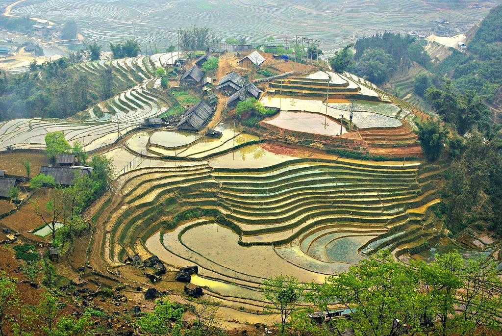 Sapa Terraces, Vietnam