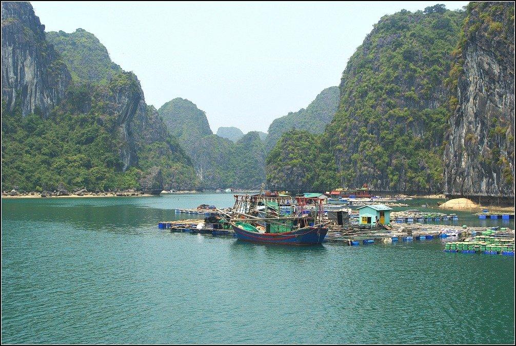 Mist Labers Lan Ha Bay Vietnam