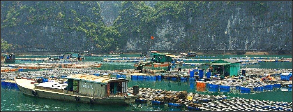 Lan Ha Bay Fishing Village, Vietnam