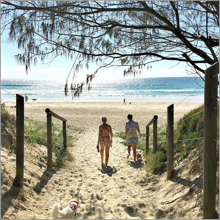 Two girls and a white dog at Coolum Beach