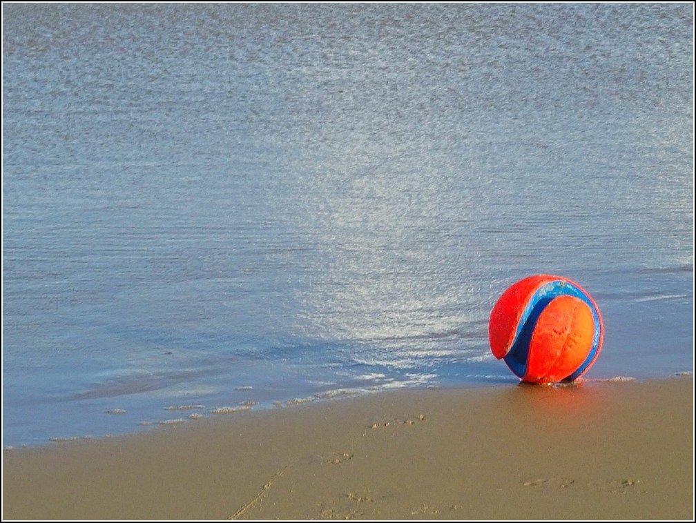 Stumers Creek Dog's Beach Ball