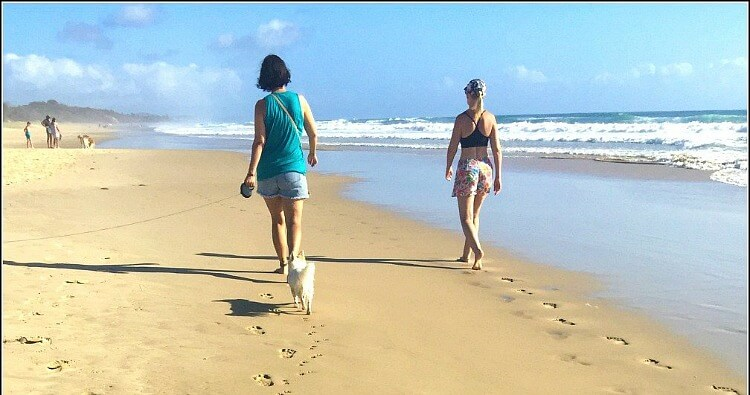 Backview of two women walking with a white fluffy dog at Stumers Creek