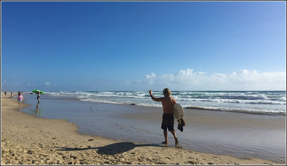 Stumers Off-Leash Dog Beach is a Multi Purpose Beach