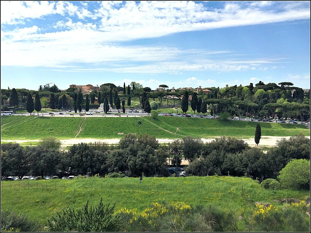 There are more sights to see near Palatine Hill including Circus Maximus