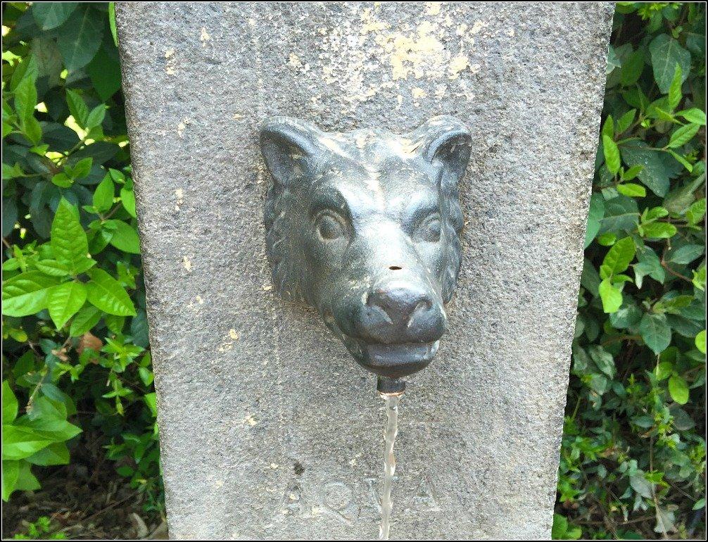 Palatine Wolf Water Fountain