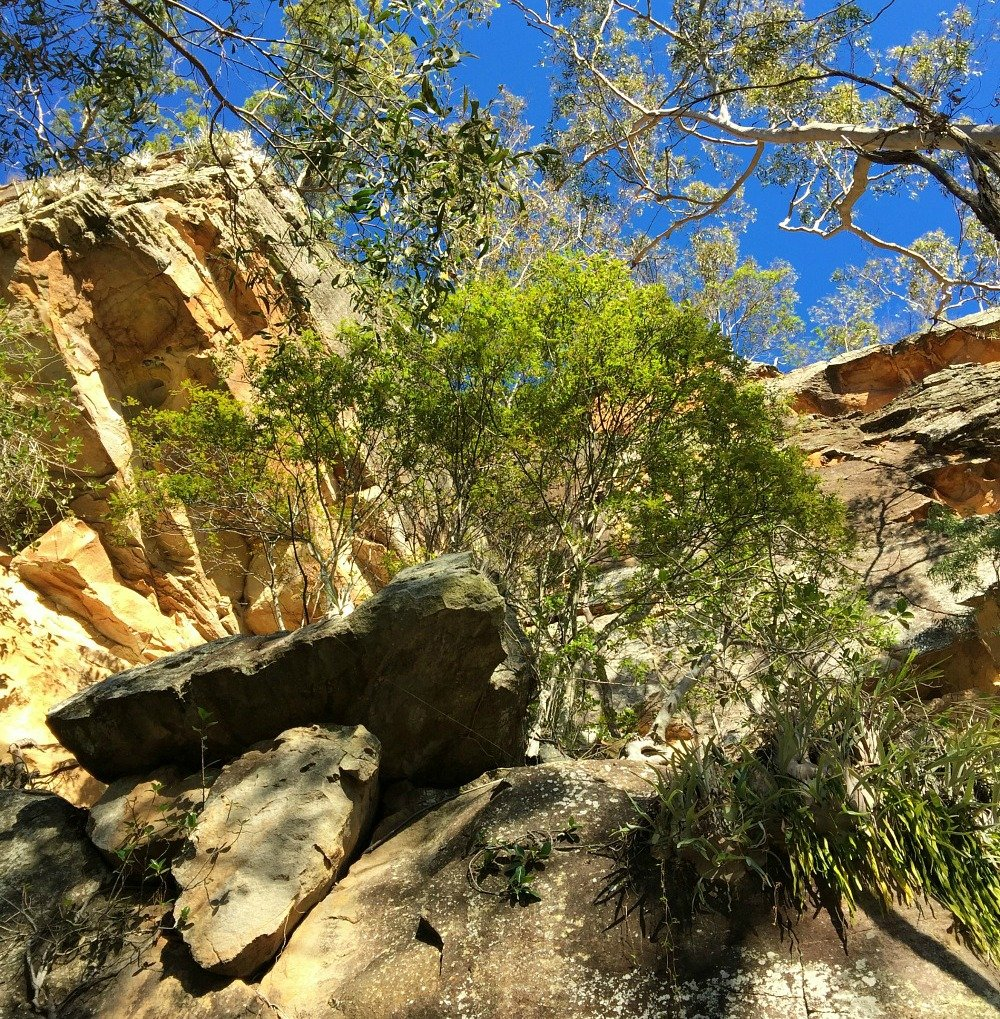 Cania Gorge Sandstone Cliffs