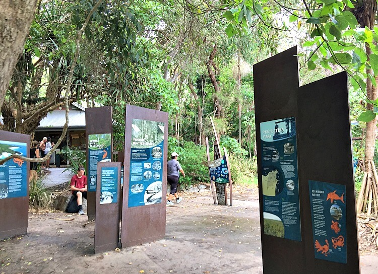 Outdoor Information Boards beneath the trees in the day use area at Noosa National Park