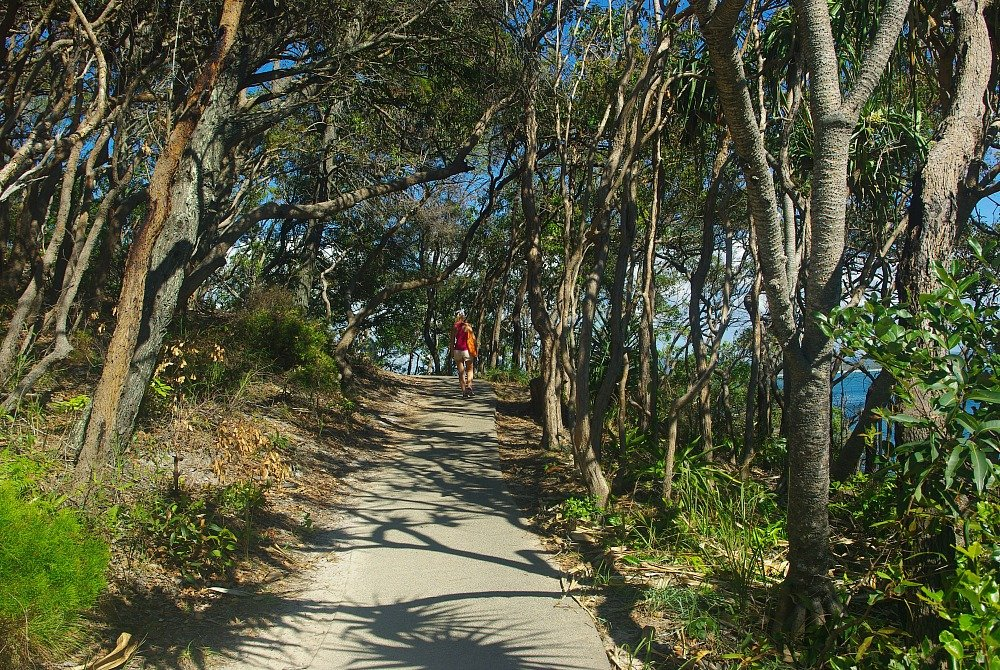 Noosa National Park Coastal Track 4
