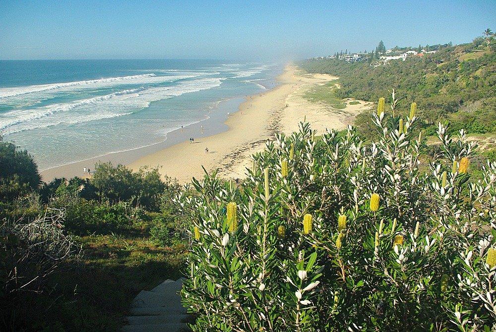 Noosa National Park Walk Sunshine Beach from Headland