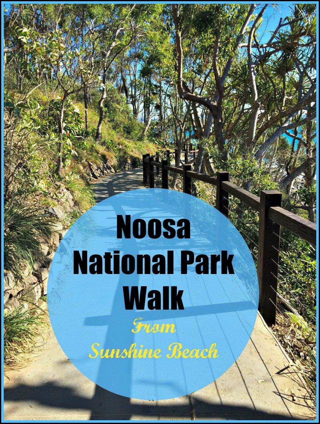 Noosa National Park from Sunshine Beach