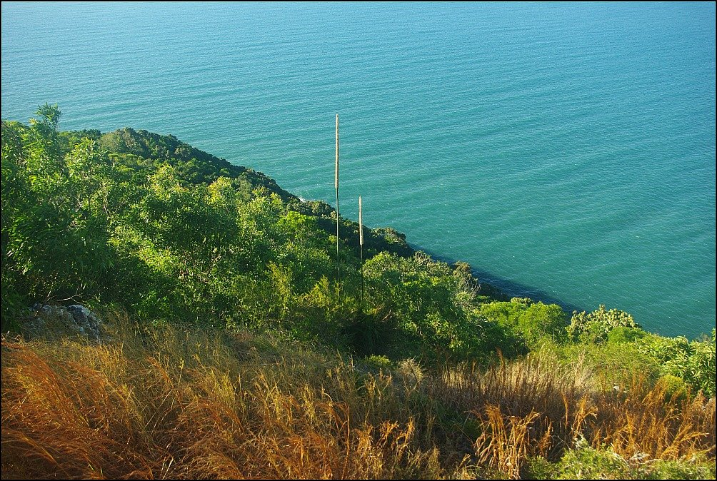 Cape Hillsborough Ocean Views