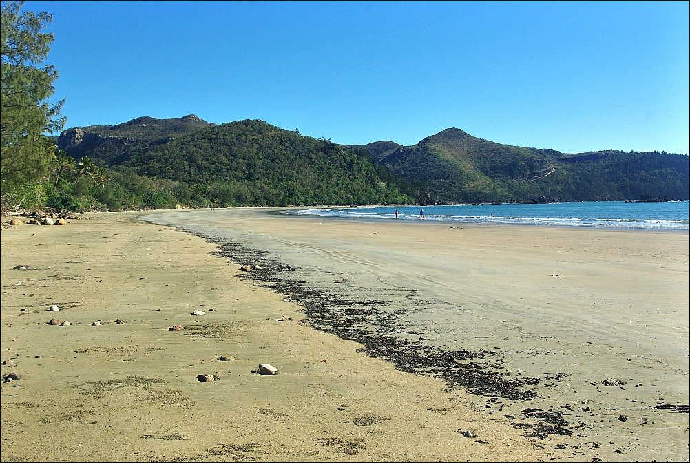Cape Hillsborough High Tide Mark