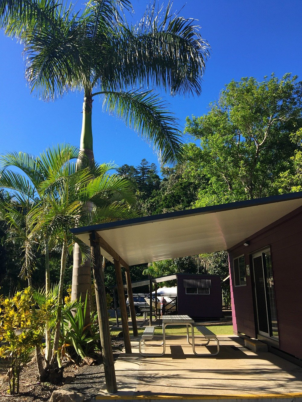 Cape Hillsborough Tourist Park Cabin