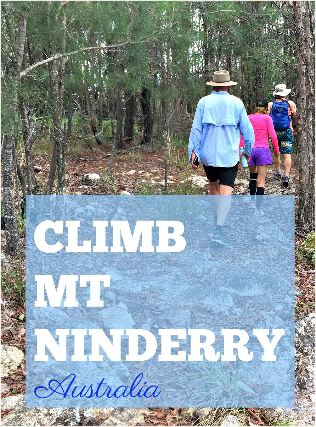 Climb Mt Ninderry Australia with it's wonderful coastal and hinterland views and then afterwards explore the cute country town of Yandina. Yandina has an exciting alternative vibe with community permaculture garden, gazillion coffee spots and second hand shops.