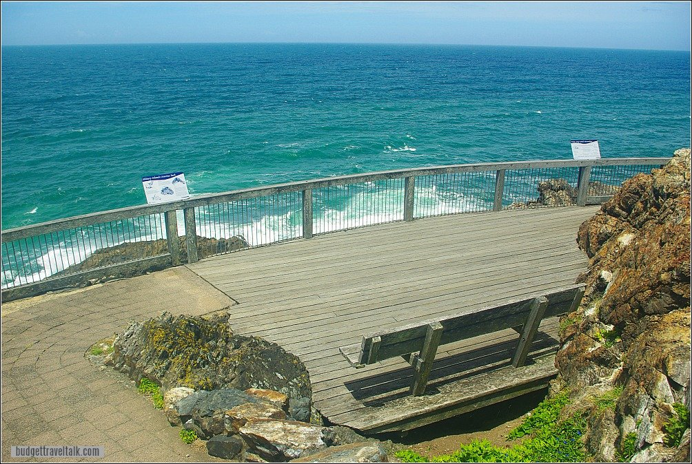 The Muttonbird Island walkway at Coffs Harbour terminates in a viewing platform on the ocean side.