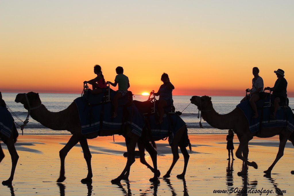 Cable-Beach-Camels-Sunset