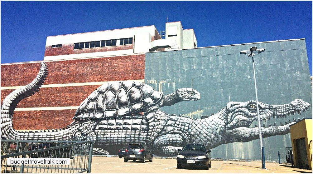 Townsville Croc and Turtle Street Art by Roa in Cowboys Car Park Sturt Street Townsville