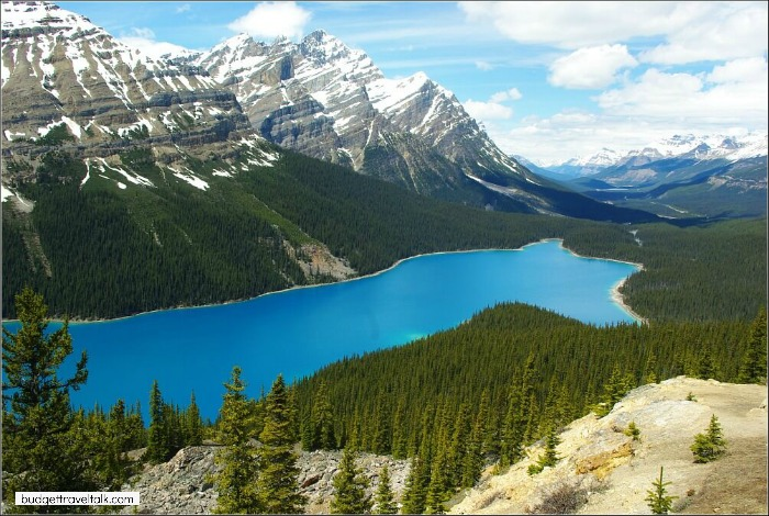 Peyto Lake in the Canadian Rockies is brilliant blue in an impressive landscape