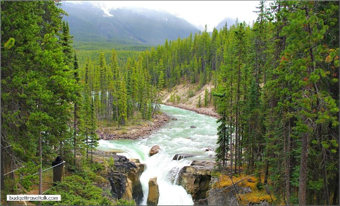 Sunwapta River on the Icefield Parkways