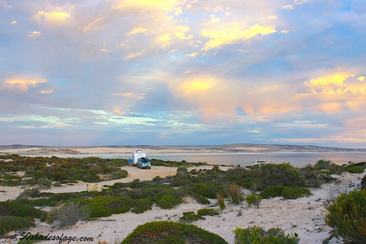 Photo of a caravan free camping amongst the sand and seaside shrubbery at Drummonds Point Australia