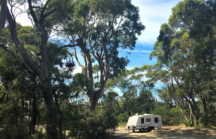 Caravan at the Neck Campground Bruny Island