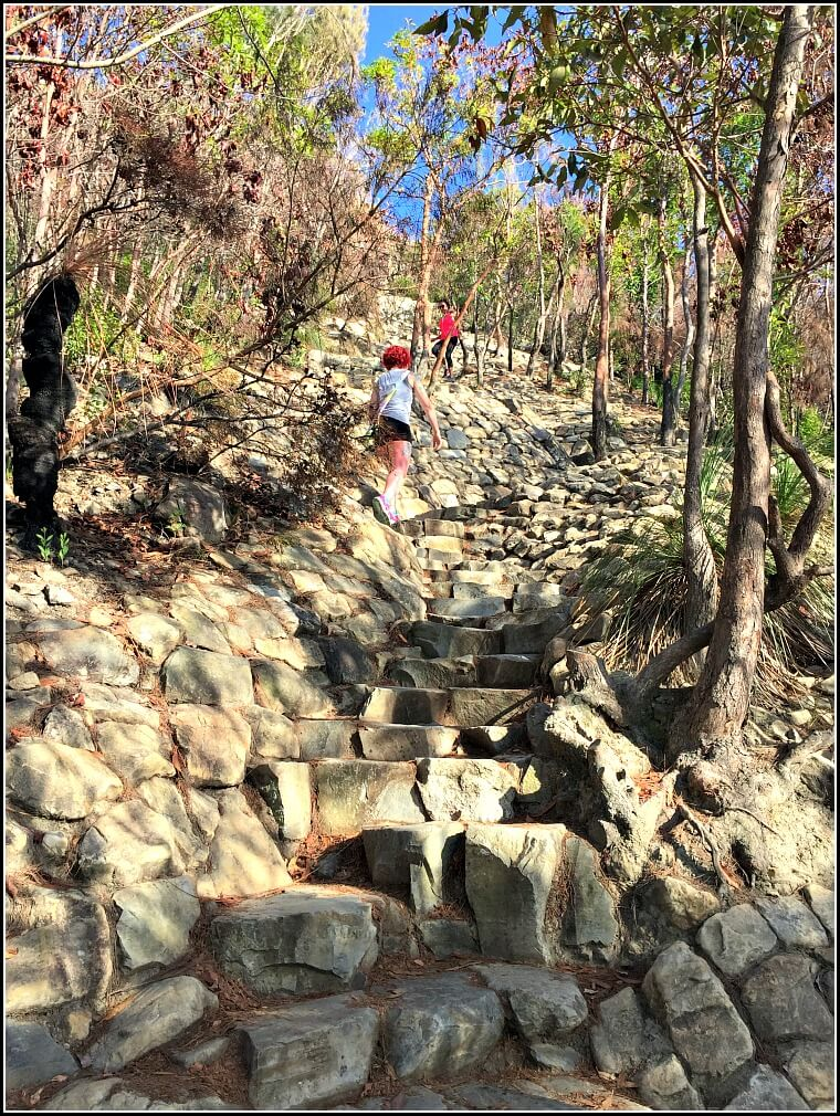 Climbing rock stairs on Mt Coolum