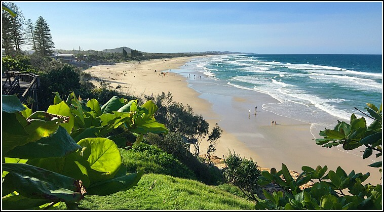 Green Grass and Trees on the headland looking over Coolum Beach