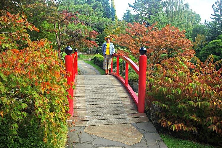 Visitor posing beside on the Japanese Bridge at Hobart Botanical Gardens beside flowering maples