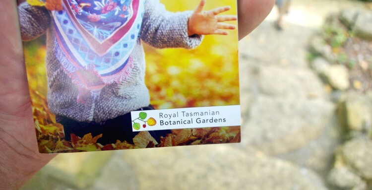 Part of the Visitors Guide and Map for Royal Tasmanian Botanical Gardens against a background of pavers