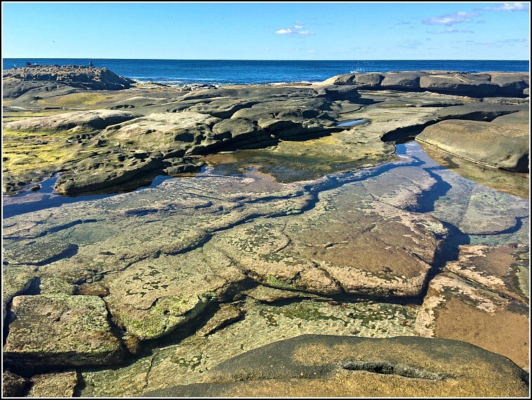 Rock Pools at Shelly Beach Caloundra on a blue sky day