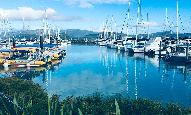 Abell Point Marina Airlie Beach