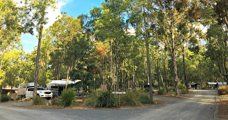 Caravan parked in bush setting at Paradise Country Farm Stay